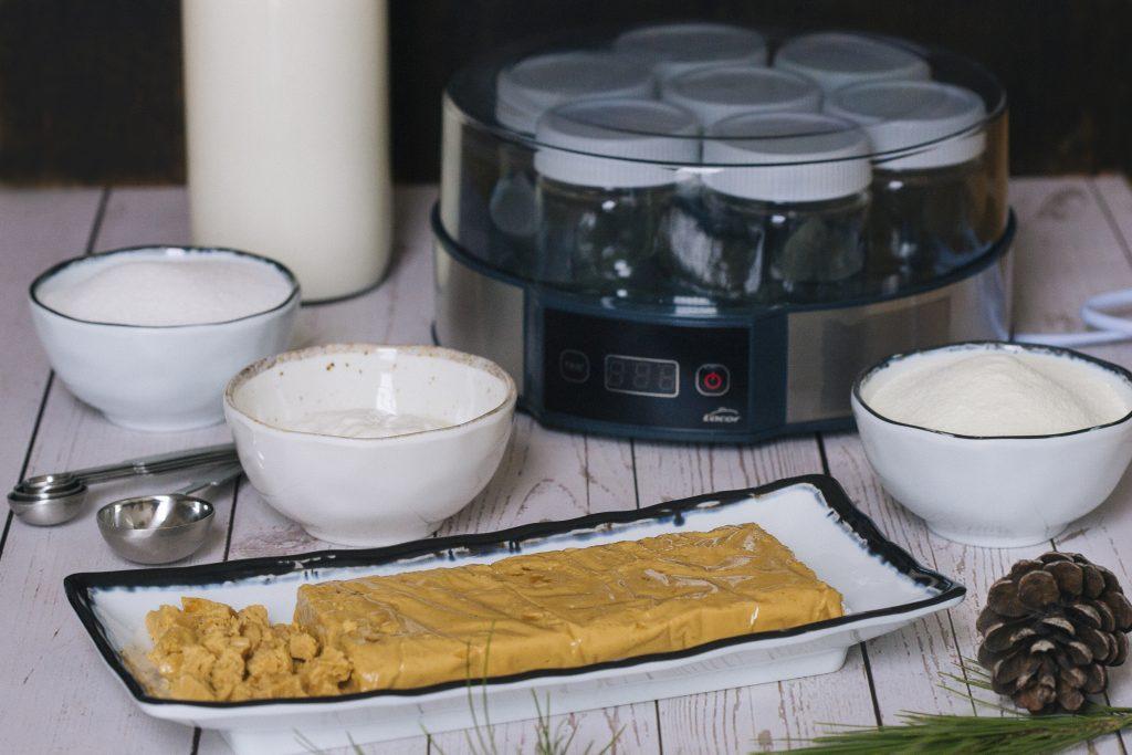 yogurdeturronenyogurteraLacor-1