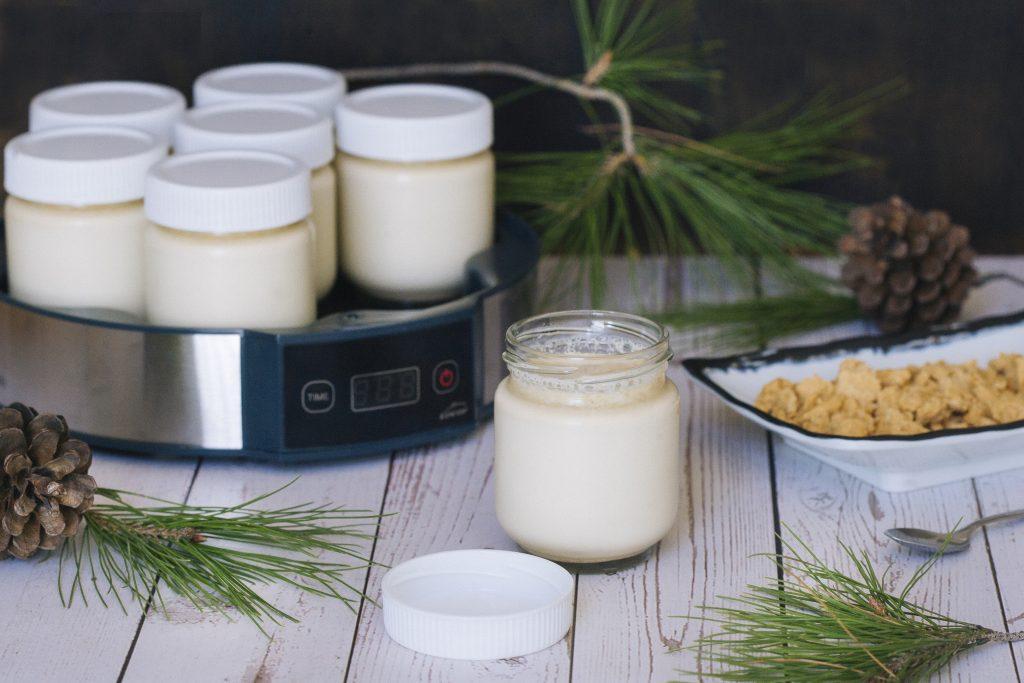 yogurdeturronenyogurteraLacor-3